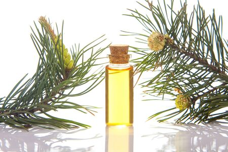 Essence of pine on a table in a beautiful glass jar Фото со стока