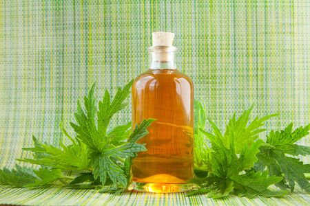 motherwort essential oil in a beautiful bottle on the table Фото со стока - 150498418