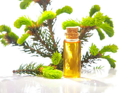 Essence of pine on a table in a beautiful glass jar Banco de Imagens