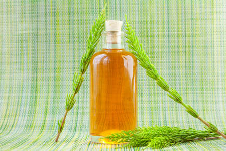 horsetai essential oil in a beautiful bottle on the table