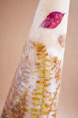 paraffine: paraffine kaars met bladeren uhimi