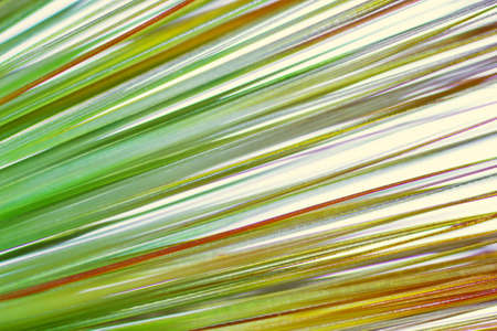 hair tuft: abstract background, a tuft of hair under the microscope