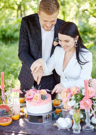 Stylish wedding picnic with cake and champagne