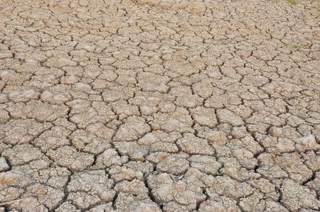 cultivable: Arid no rain to parched soil  Not cultivable