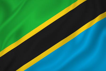 Tanzania national flag background texture.