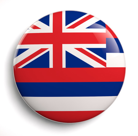 Hawaii state flag isolated icon. Stock Photo