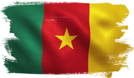 Cameroon flag with fabric texture. 3D illustration.