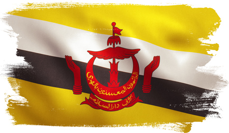 Brunei flag with fabric texture. 3D illustration. Stock Photo