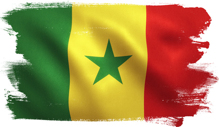 Senegal flag with fabric texture. 3D illustration. Stock Photo