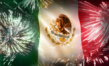 Mexico Flag Fireworks Colorful Celebration Display