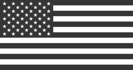 USA American Flag in Black & White - Vector Illustration