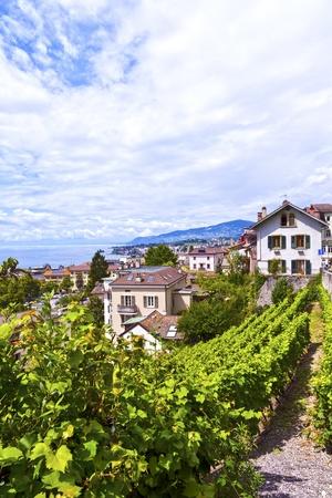 montreux: Vineyards in Montreux Town, Switzerland