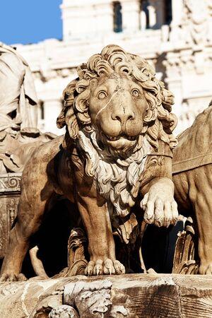 palacio de comunicaciones: Cibeles Fountain Stone Lion Detail by Robert Michel