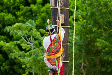 Traditional Mayan Flyer Man Climbing a Wooden Pole in the Dance of the Flyers Ceremony  The Danza de los Voladores  Dance of the Flyers  is an old Mesoamerican ritual still performed today which consists of climbing a 30 meter pole from which four of the