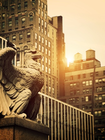 gargoyle: Stone Eagle in Manhattan