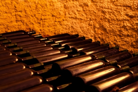 maturing: Red Wine Bottles in an Old Wine Cellar