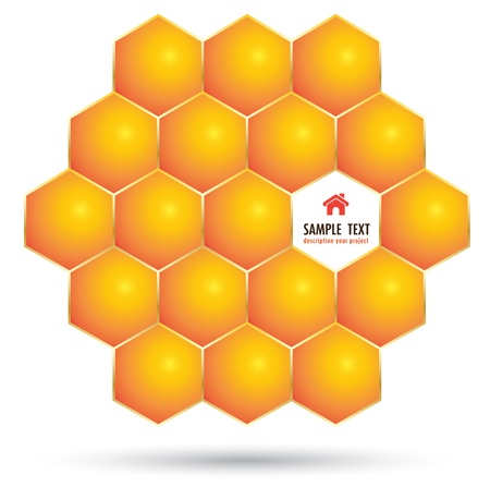 Honeycomb for bee concept Vector