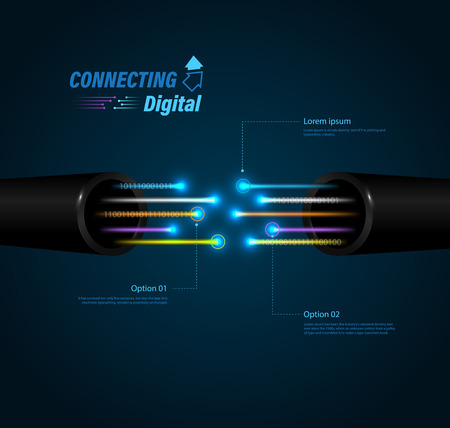 Fiber optic connection for  business communication  on network technology