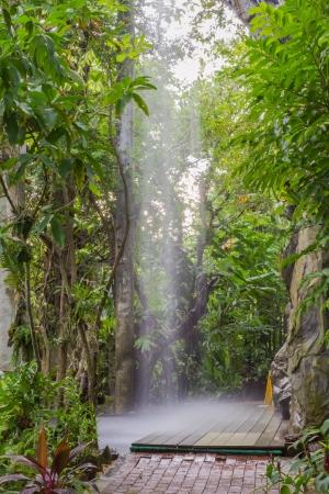 botanic: Artificial waterfall in botanic garden