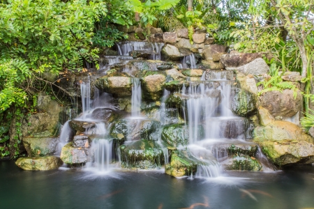 Waterfall in botanic garden