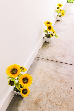 rest room: Sunflowers decoration on walk way to rest room