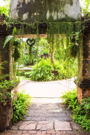 Entrance to fern garden, Thailand