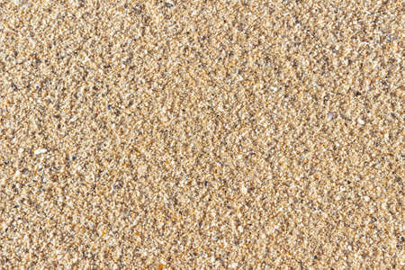 Coarse sand background and texture