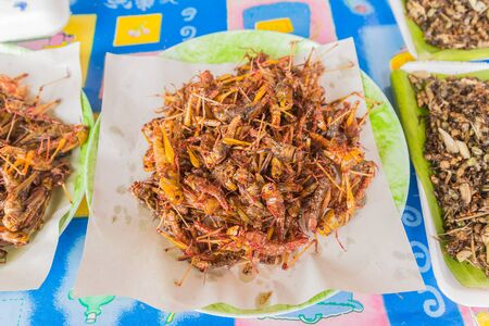 grasshoppers: Fried grasshoppers for sale at local Thai market, Northeast of Thailand