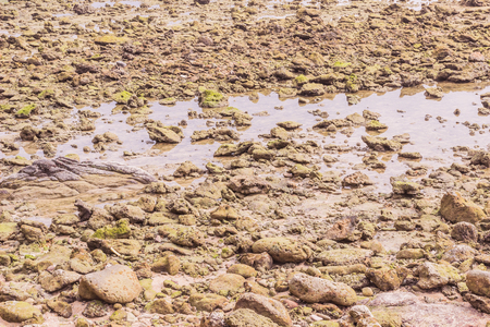 Rock exposed and sea water when low tide at Kalim beach, Phuket, Thailand. It an be used as background