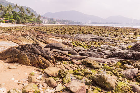 Rock exposed when low tide at Kalim beach, Phuket, Thailand. It an be used as background Stock Photo
