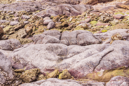 Rock exposed when low tide at Phuket, Thailand. It an be used as background