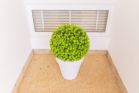 Green Plastic plant in pot for decoration outdoor Stock Photo