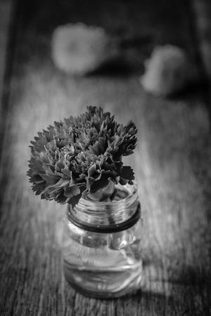 noir et blanc: Fleurs d'oeillets rouges sur fond de bois - Blanc Noir effet de filtre.