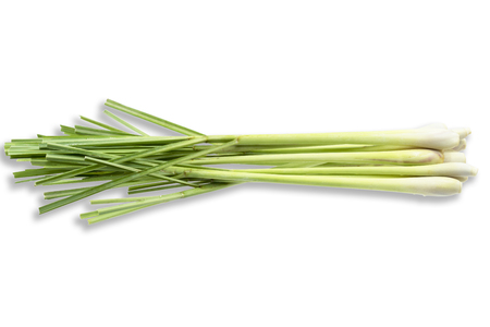 Fresh Lemongrass (citronella) isolated on white background, with clipping path. Imagens