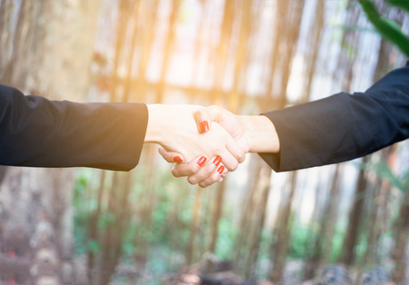 Business handshake and business people concept. Two women shaking hands over sunny in garden  background. Partnership completed deal. Imagens