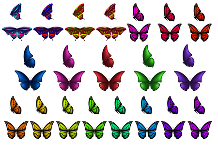 Realistic colorful 3d butterflies set, isolated white background. Decoration element for design