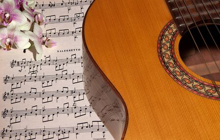 resonate: Acoustic guitar and orchid laying on the notes