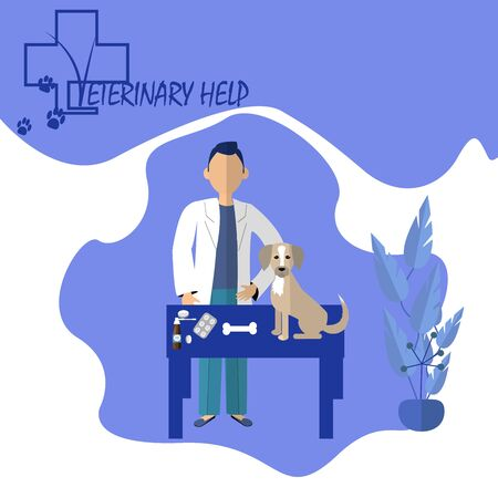 Trendy Concept illustration of veterinary medicine. Doctor veterinary with dog, pills in flat vector design