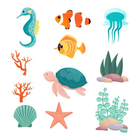 Set from seahorse, turtle, exotic fish, clown fish, jellyfish, starfish, seashell, corals, underwater plants in vector design. Isolated objects on white background.  向量圖像
