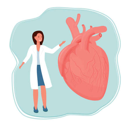 Doctor woman standing and smiling near human heart organ stock vector illustration isolated on white background. Healthcare, medical examination concept.