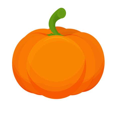 Ripe pumpkin, orange colorful isolated on white background stock vector illustration. Vector illustration