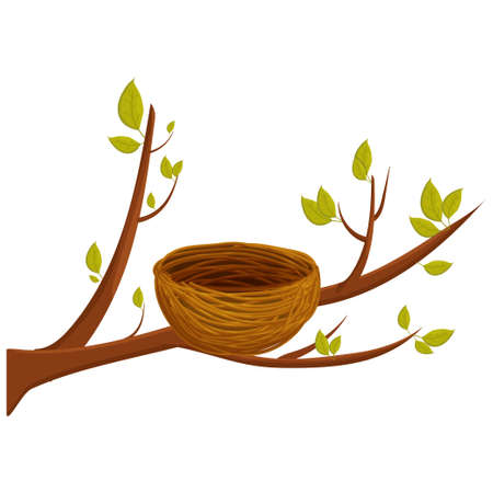 Empty bird nest from twigs on tree branch with leaves isolated on white background. Spring time, vector clipart, brown wooden construction, home from sticks. Detailed, bright object. Vector illustration