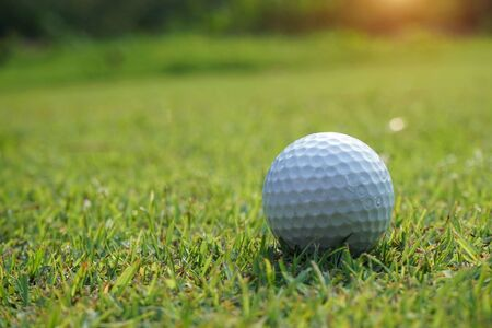 Golf ball on the green with warm tone and sunset. Golf ball on Green field golf course in morning time with soft sunlight. Stock Photo