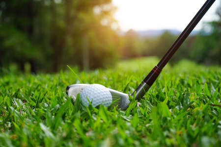 Golf ball and golf club in beautiful golf course at Thailand. Collection of golf equipment resting on green grass with green background.