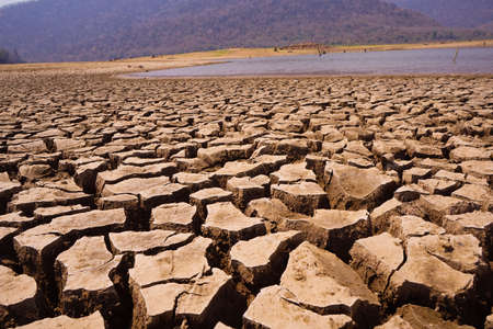 The drought land texture in Thailand. The global shortage of water on the planet. Global warming and greenhouse effect concept.