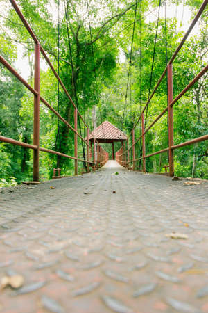 walk in: Tree Top Walk in thailand