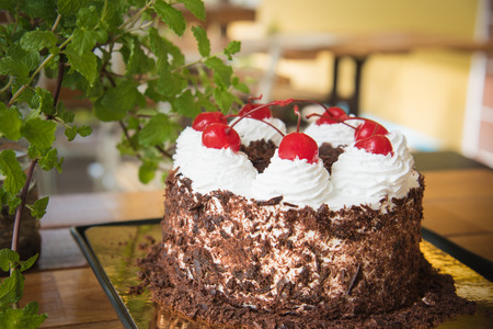 black forest: Black forest cake decorated with whipped cream and cherries Stock Photo