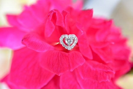 Heart shaped diamond ring with pink rose, Valentine day, Wedding Concepts.