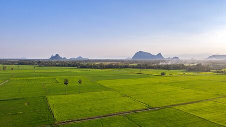Image of beautiful Terraced rice field in water season and Irrigation from drone,Top view of rices paddy field, thailand. High angle image, green rice field plot. Stock fotó