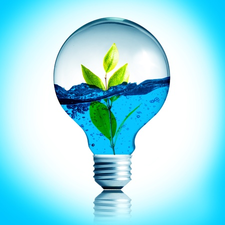 overuse: green energy concept, plant growing inside the light bulb